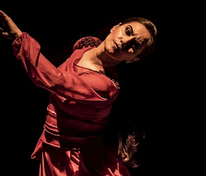 Bruselas Flamenco Festival 2019