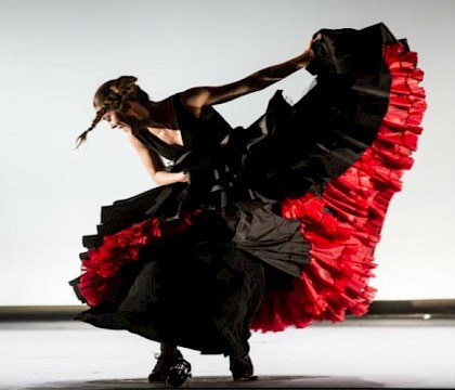 Bruselas Flamenco Festival 2020